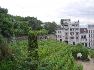 Paris, Vignes de Montmartre