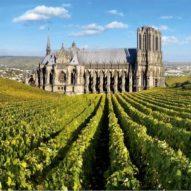 Cathédrale-Reims-Champagne-Vignes