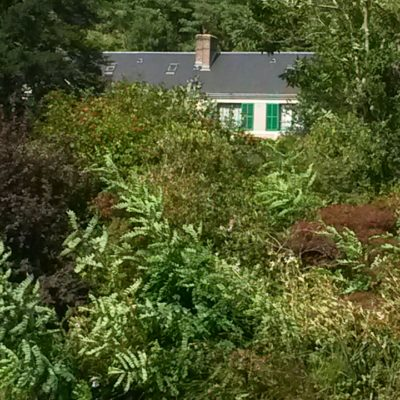 Jardin-Monet-Nénuphar-Bucolique