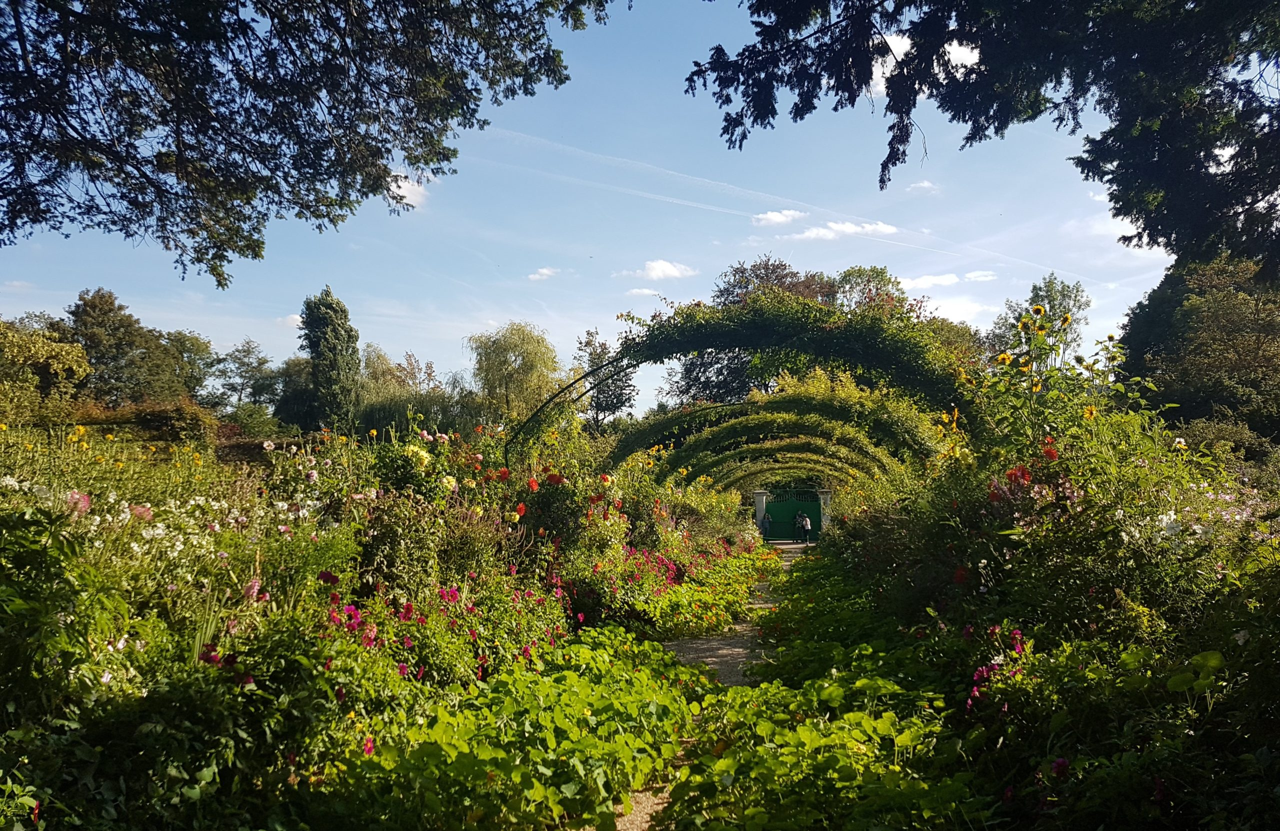 Garden-Monet-Giverny-Impressionism