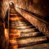 cave veuve clicquot