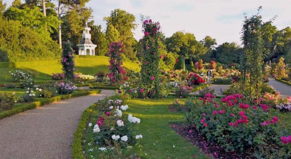 Nature et patrimoine – Balade fleurie