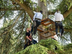 Workshop Toast in the treetop Passages Secrets
